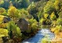 Pausage d'automne : les gorges du Lot, Aveyron, France